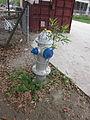 Terre-aux-Boeufs 10 Mch 2012 Hydrant.JPG