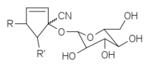 Tetraphyllin-gynocardin.png