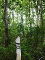 Thandaung, Myanmar (Burma) - panoramio (2).jpg