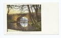 The Farnum Bridge, Richfield Springs, N. Y (NYPL b12647398-62268).tiff