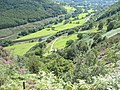 The Mawddach valley below Maes-mawr - geograph.org.uk - 742315.jpg