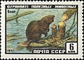 The Soviet Union 1961 CPA 2536 stamp (Eurasian Beaver).jpg