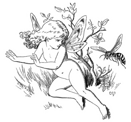 FAIRY AND WASP
