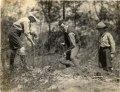 Three men digging with shovels, Ontario, 03Q P907P88.tiff