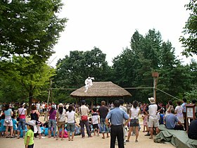 TightropewalkerKoreanFolkVillage.jpg
