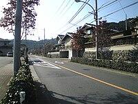 Tokyo Prefectural Road 45.JPG