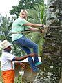 Touriste sur un palmier.jpg