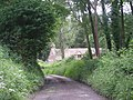 Track into a wood - geograph.org.uk - 832824.jpg