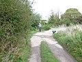 Track repairs near Chickerell - geograph.org.uk - 960594.jpg
