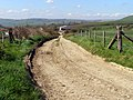 Track to Swalland Farm, Smedmore Estate - geograph.org.uk - 769125.jpg
