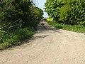 Trackway and Bridleway - geograph.org.uk - 454600.jpg