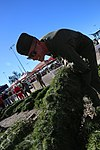 Tree giveaway spreads holiday cheer through MCAS Miramar 151202-M-HJ625-002.jpg