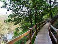 Trilho Marginal ao Rio Minho.JPG