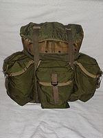 3aa2160745 Tropical Rucksack (back)