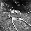 Tudi v voznem košu za gnoj peljejo na njivo plug, brano itd. Pstinar, Zakojca 1954.jpg