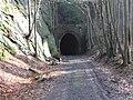 Tunnel Schwarzbachtal.jpg