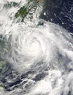 Typhoon Dujuan 02 sep 2003 0250Z.jpg