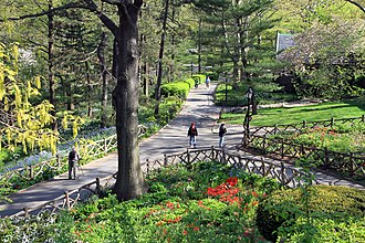 Bruce Kelly (landscape architect) - Image: USA NYC Central Park Shakespeare Garden 0