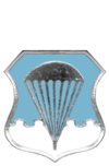 Air Force Basic Parachutist Badge