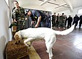 US Navy 101108-N-8546L-040 Chief Master-at-Arms Nick Estrada, left, a U.S. Navy military working dog handler from Orange, Calif.jpg