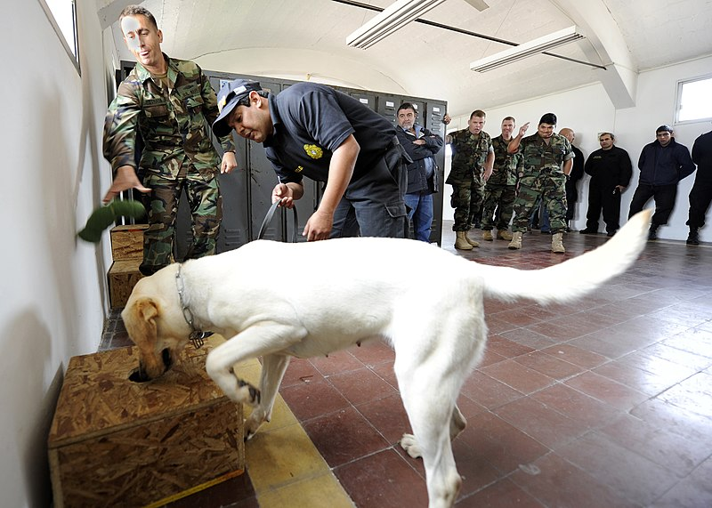 File:US Navy 101108-N-8546L-040 Chief Master-at-Arms Nick Estrada, left, a U.S. Navy military working dog handler from Orange, Calif.jpg