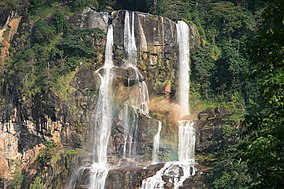 Udzungwa mountains-1.jpg