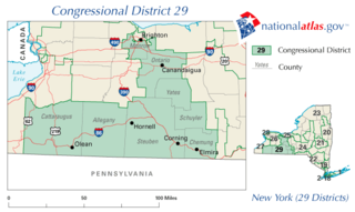 New Yorks 29th congressional district
