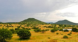 Upland South Africa Savanna.jpg