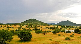 270px-Upland_South_Africa_Savanna.jpg