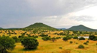 KwaZulu-Natal - Upland savannah near Pietermaritzburg.