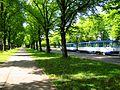 Uzvaras bulvaris - aleja - panoramio (2).jpg