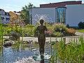 Västerås botaniska trädgård-IMG 8525.jpg