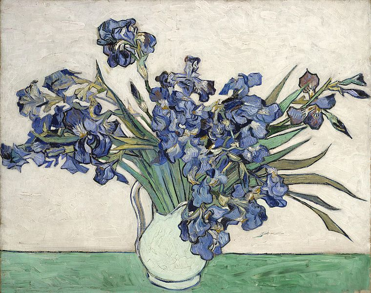 Билэ:VanGogh-Irises 2.jpg