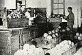 Varietiesofopiumtaiwan1920.jpg