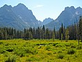View from Fishhook Creek Meadow.jpg