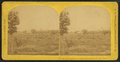 View from Prospect House, Bethlehem, N.H, from Robert N. Dennis collection of stereoscopic views.png