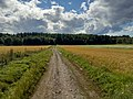 View from a gravel road through the fields in the outskirts of Pori, August 2020.jpg