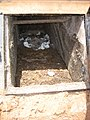 View into faeces chamber at private UDD toilet (3483402270).jpg