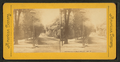View of street, Detroit, Michigan, from Robert N. Dennis collection of stereoscopic views.png