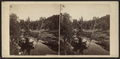 View on Catskill Creek, by E. & H.T. Anthony (Firm) 2.png
