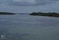View up mangrove bordered turtle pond. Inagua (27093983919).jpg