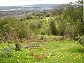 Viewpoint, Netheroyd Hill Liberal Club, Fartown - geograph.org.uk - 160639.jpg