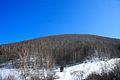 Views of Smolenskiy district of Altai Krai 03.JPG