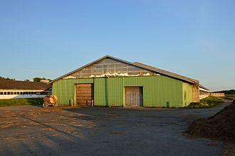 Agriculture in Estonia - Dairy farm in Estonia