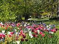 Visby Botanical Garden 02.JPG