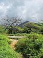 Vista al Cerro Santa Ana.jpg