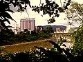 Vista selvagem da Beira Rio.jpg