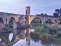 WLM14ES - Puente medieval de Besalú 8 - sergio segarra.jpg