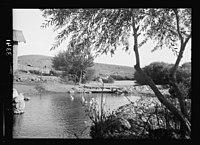 Wady Sha'ib Es-Salt, Amman, etc. Source of the Zerka LOC matpc.15300.jpg