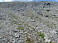 Wandern Schweiz Frostmusterboden Steinstreifen Cassons.jpg
